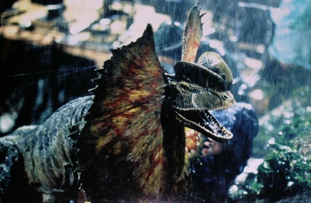 Ừ thì chất chơi và nổi bật đấy, mà sao càng nhìn bộ cánh này của HHen Niê càng liên tưởng đến... Thế giới động vật - Ảnh 9.