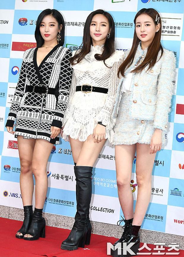 Thảm đỏ gây sốc: 2 thảm họa thẩm mỹ Kpop lộ mặt cứng đơ, Park Hae Jin đọ chân siêu dài bên nam thần mới nổi - Ảnh 19.