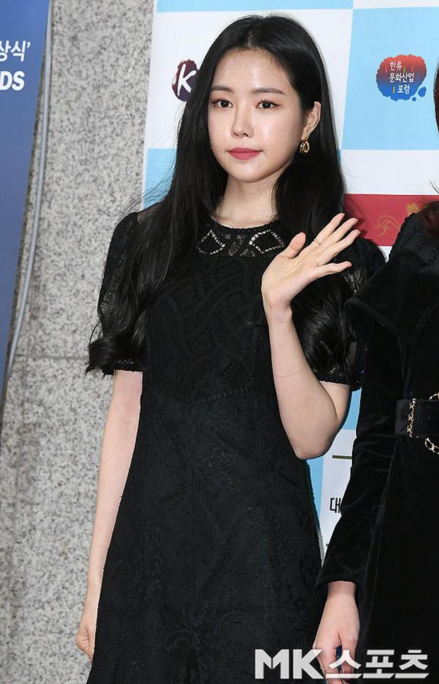 Thảm đỏ gây sốc: 2 thảm họa thẩm mỹ Kpop lộ mặt cứng đơ, Park Hae Jin đọ chân siêu dài bên nam thần mới nổi - Ảnh 3.