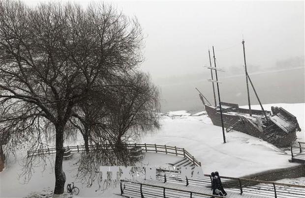 Bão tuyết hoành hành tại Trung Quốc - Ảnh 1.