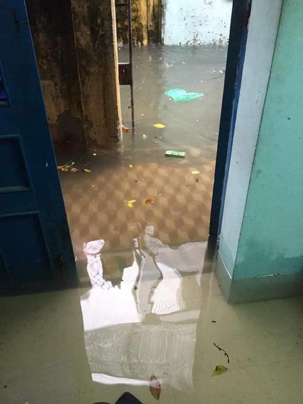Sinh viên mếu máo nhìn nhà trọ chìm trong biển nước sau trận ngập nghiêm trọng chưa từng có tại Đà Nẵng - Ảnh 2.