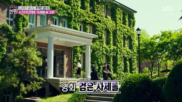 Hơn 100 phim Hàn đều chọn ngôi trường đại học tuyệt đẹp này làm bối cảnh ghi hình - Ảnh 4.