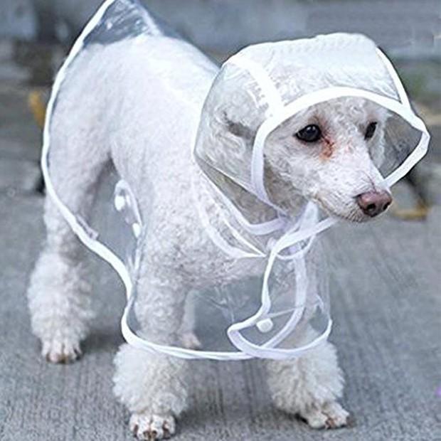 Trời mưa lạnh thế này, sắm ngay một chiếc áo mưa siêu cấp đáng yêu cho cún thôi nào - Ảnh 3.