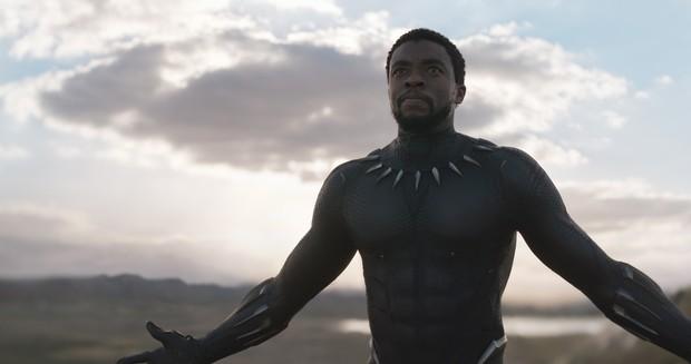 Black Panther: Tác phẩm siêu anh hùng Marvel tuyệt vời nhất từ trước đến nay! - Ảnh 3.