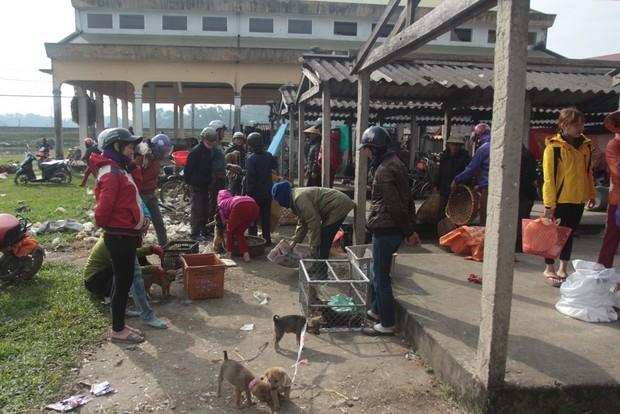 Thích thú đến chợ chó con ở Nghệ An vào ngày 29 Tết - Ảnh 2.