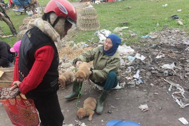 Thích thú đến chợ chó con ở Nghệ An vào ngày 29 Tết - Ảnh 6.