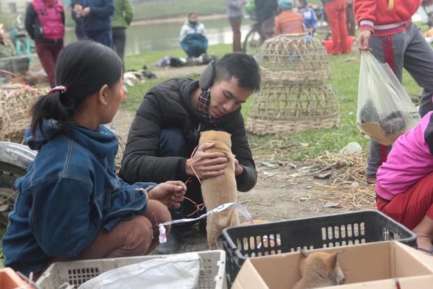 Thích thú đến chợ chó con ở Nghệ An vào ngày 29 Tết - Ảnh 7.