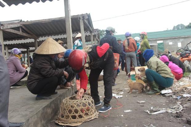 Thích thú đến chợ chó con ở Nghệ An vào ngày 29 Tết - Ảnh 9.