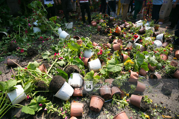 Sau khi tiểu thương tự tay đập chậu trưa 30 Tết, hàng chục người dân lao vào hôi hoa - Ảnh 11.