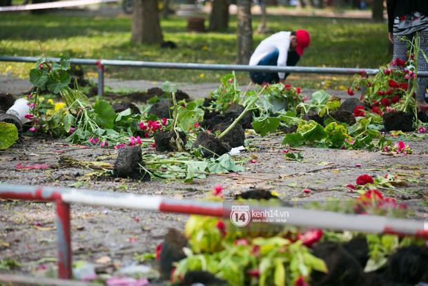 Sau khi tiểu thương tự tay đập chậu trưa 30 Tết, hàng chục người dân lao vào hôi hoa - Ảnh 10.