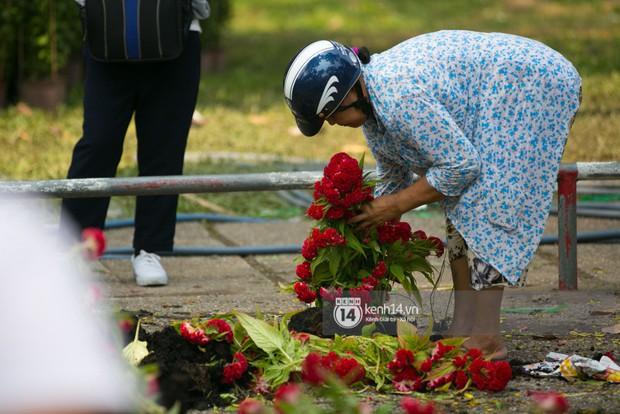 Sau khi tiểu thương tự tay đập chậu trưa 30 Tết, hàng chục người dân lao vào hôi hoa - Ảnh 12.