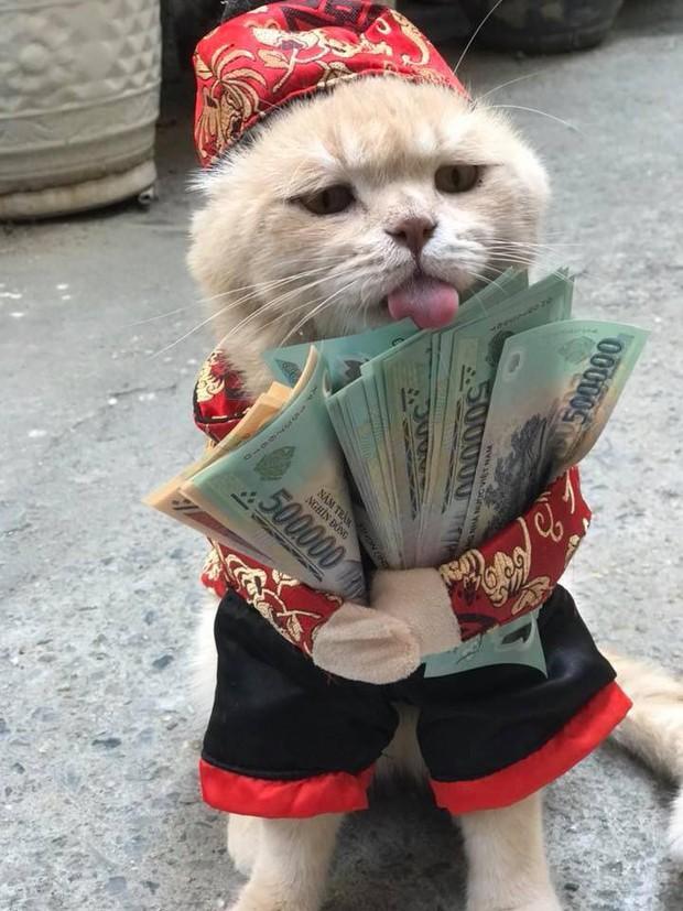 Bộ mặt hờn dỗi của các boss khi năm nay bị thất thu tiền lì xì - Ảnh 1.