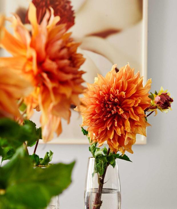 Ghé thăm ngôi nhà rực rỡ sắc màu của mùa Xuân - Ảnh 1.