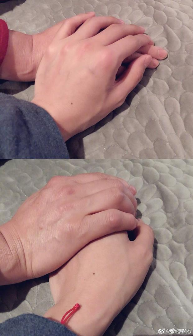 Trào lưu mới Nắm lấy bàn tay mẹ: Huỳnh Hiểu Minh - Angela Baby cùng dàn sao cùng nhau hưởng ứng - Ảnh 10.