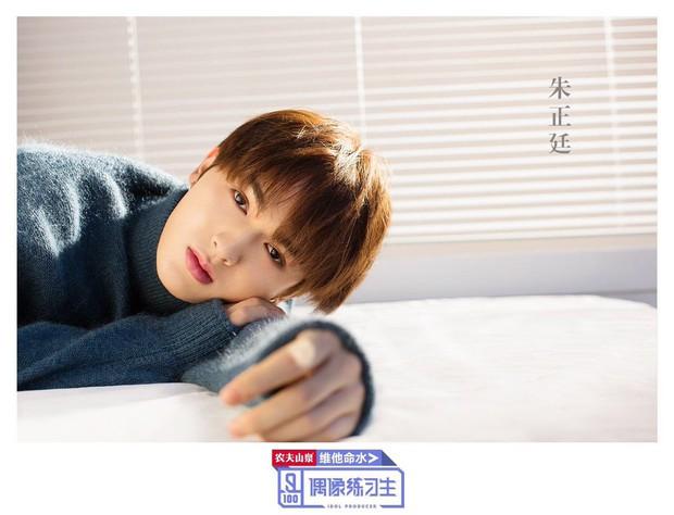 Em trai Phạm Băng Băng không nằm trong top thí sinh đẹp trai nhất Produce 101 Trung Quốc - Ảnh 13.