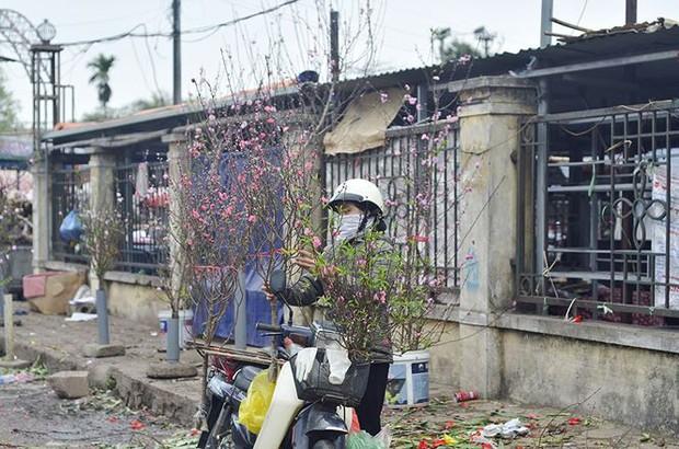 Nhà giàu Hà Nội chi tiền triệu chơi hoa lê rừng sau Tết - Ảnh 15.