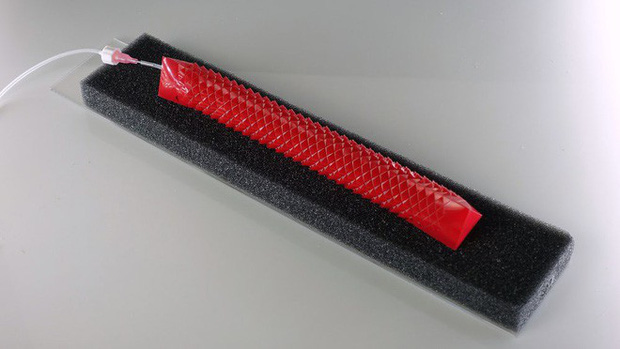 Kỹ thuật cắt giấy cổ đại Nhật Bản đang được ứng dụng để chế tạo robot mềm, chuyển động mượt mà như rắn thật - Ảnh 4.