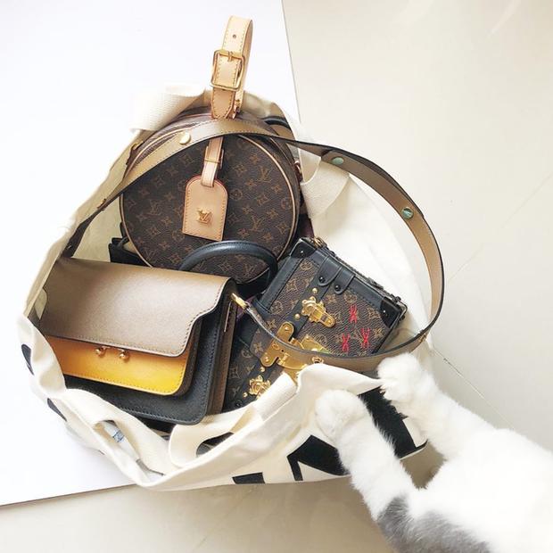 LV Petite Boite Chapeau - chiếc túi có gì đặc biệt mà khiến các tín đồ thời trang thi nhau đụng hàng - Ảnh 30.