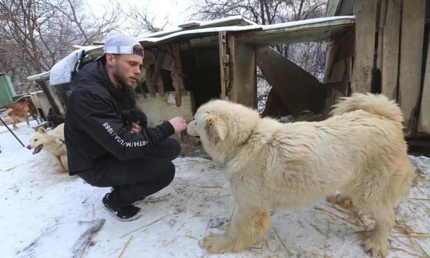 Vận động viên trượt tuyết Mỹ giải cứu 90 chú chó được nuôi lấy thịt, đóng cửa cả trang trại chó khi đang thi đấu tại Hàn Quốc - Ảnh 3.