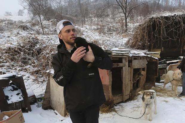 Vận động viên trượt tuyết Mỹ giải cứu 90 chú chó được nuôi lấy thịt, đóng cửa cả trang trại chó khi đang thi đấu tại Hàn Quốc - Ảnh 4.