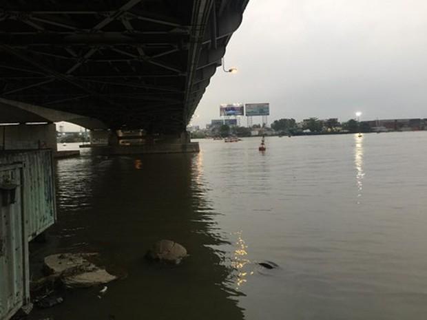 Nam thanh niên bỏ bạn gái giữa cầu Đồng Nai rồi nhảy sông mất tích - Ảnh 1.