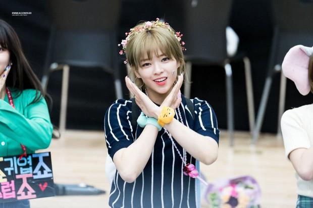 Nam giới Nhật chọn nữ idol đẹp nhất Kpop: TWICE, Black Pink đều có mặt nhưng không bì được nữ thần nhan sắc này - Ảnh 10.