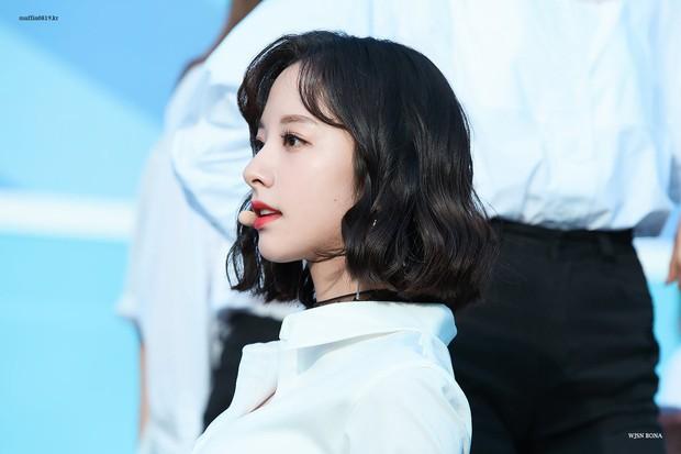 Nam giới Nhật chọn nữ idol đẹp nhất Kpop: TWICE, Black Pink đều có mặt nhưng không bì được nữ thần nhan sắc này - Ảnh 24.