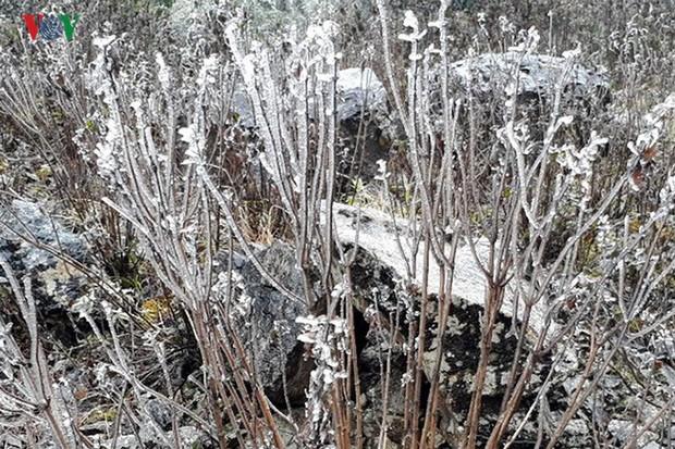 Băng tuyết gây ách tắc quốc lộ 4D nối Lai Châu - Lào Cai - Ảnh 14.