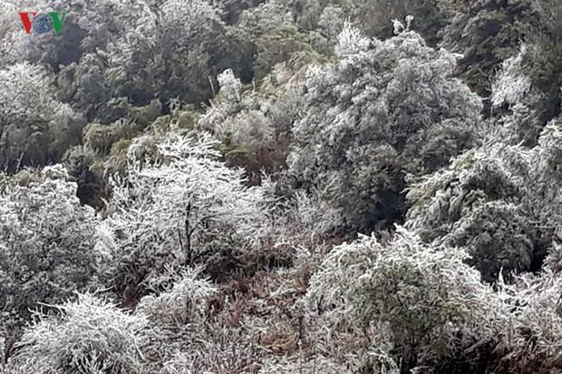 Băng tuyết gây ách tắc quốc lộ 4D nối Lai Châu - Lào Cai - Ảnh 3.