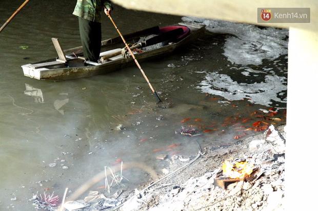 Clip, ảnh: Cá chép tiễn Táo quân vừa bơi tới cầu Diễn đã bị chích điện lôi lên bờ - Ảnh 6.