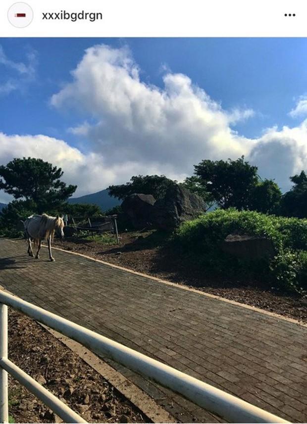 Thánh soi Dispatch tiếp tục khui loạt ảnh hẹn hò lãng mạn của G-Dragon cùng bạn gái tại đảo Jeju và Hawaii - Ảnh 6.
