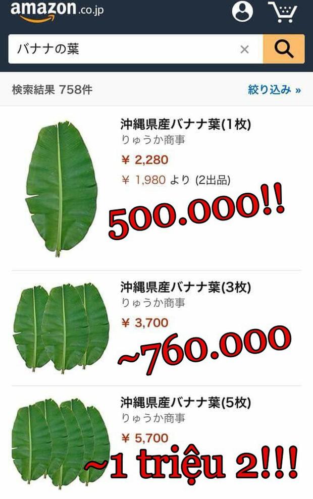 Lá chuối tươi đăng bán trên Amazon gần 500 nghìn 1 lá, mua 5 lá giảm giá còn 1 triệu 2 - Ảnh 2.
