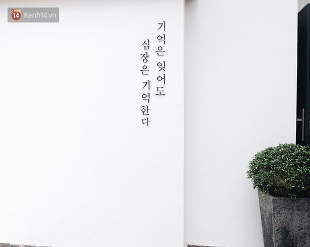 Sau bức tường vàng, bức tường trắng này sẽ là background check-in hot nhất Đà Lạt - Ảnh 4.