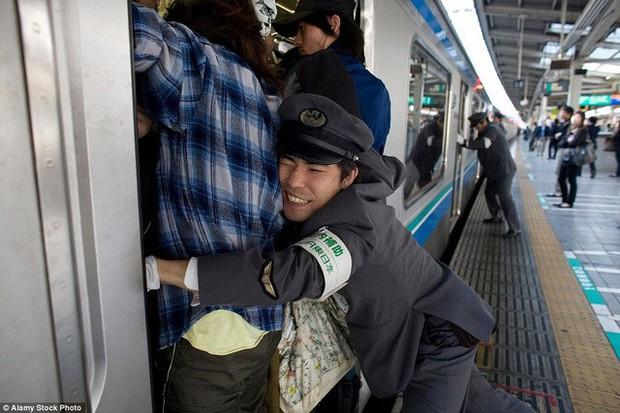 Những Oshiya hành nghề cực lạ ở Nhật Bản: Ngày làm việc 90 phút, công việc chỉ là nhồi càng nhiều khách lên tàu điện càng tốt - Ảnh 1.