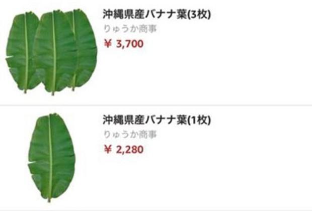 Hết túi cám con cò và lá chuối tươi, chổi đót Việt Nam được rao bán với giá cao đến không thể tin được ở Nhật Bản - Ảnh 1.