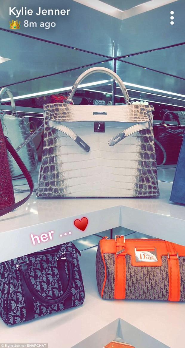 Đẳng cấp giàu có của Kylie Jenner ở tuổi 20: Chỉ bộ sưu tập túi xách đã có giá tới 22 tỷ đồng! - Ảnh 3.