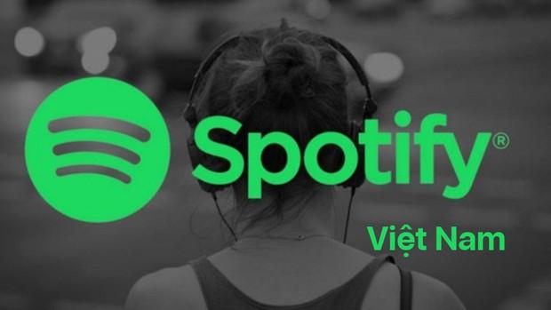 5 đặc sản hái ra tiền của Spotify, khiến hàng chục triệu người phải chết mê chết mệt - Ảnh 1.
