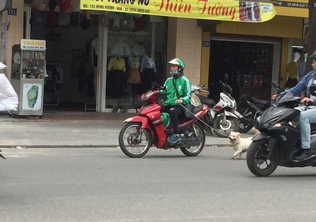 Thanh niên mặc đồng phục GrabBike tung tăng dắt chó đi dạo giữa phố đông - Ảnh 1.