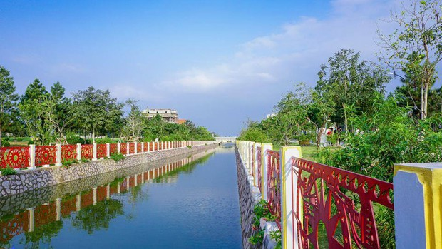 Cư dân mạng bỗng dưng phát hiện ra vườn hoa cải trắng và ruộng bậc thang chỉ cách Hà Nội có 20km - Ảnh 5.