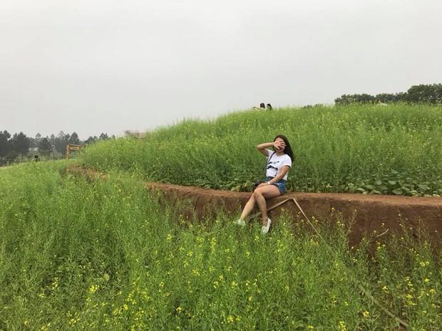 Cư dân mạng bỗng dưng phát hiện ra vườn hoa cải trắng và ruộng bậc thang chỉ cách Hà Nội có 20km - Ảnh 9.