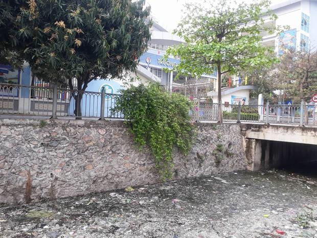 Giữa lòng Thủ đô xuất hiện hố rác lớn, nước đen đặc gây ô nhiễm nặng ảnh hưởng đến cuộc sống của hàng trăm hộ dân - Ảnh 5.