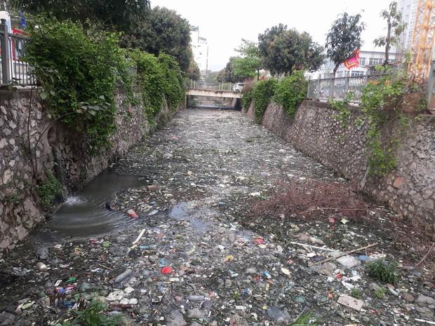 Giữa lòng Thủ đô xuất hiện hố rác lớn, nước đen đặc gây ô nhiễm nặng ảnh hưởng đến cuộc sống của hàng trăm hộ dân - Ảnh 4.