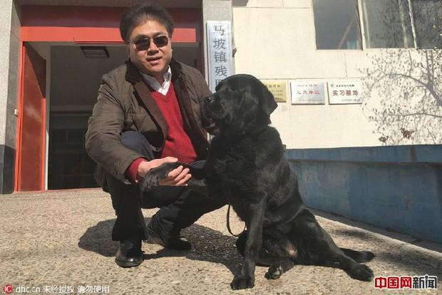 Chó dẫn đường của người đàn ông mù bị bắt trộm, một ngày sau con vật bất ngờ quay về nhà với thứ này trên cổ - Ảnh 1.
