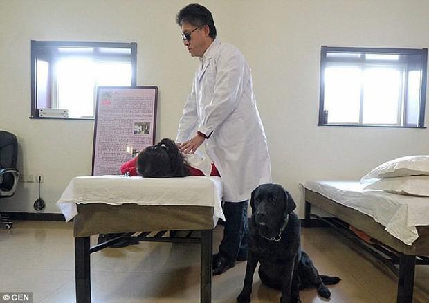 Chó dẫn đường của người đàn ông mù bị bắt trộm, một ngày sau con vật bất ngờ quay về nhà với thứ này trên cổ - Ảnh 3.