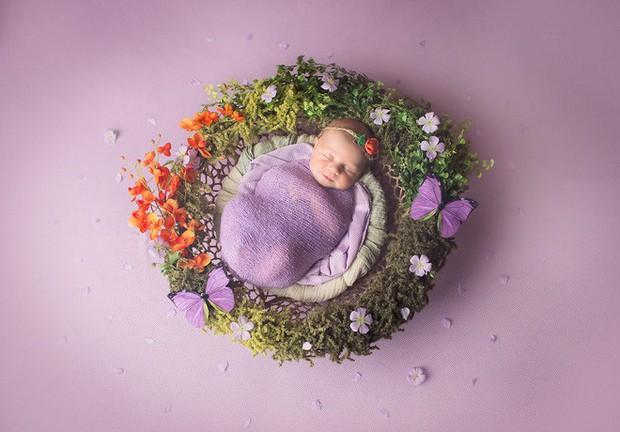 Ngất ngây với chùm ảnh những em bé sơ sinh cuộn tròn say ngủ - Ảnh 7.