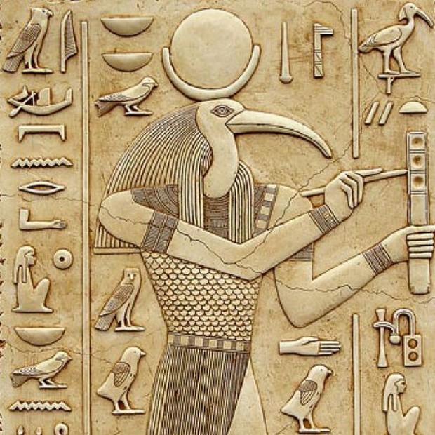 Ở thời Ai Cập cổ đại, có gan cùng trời giết loài chim này, án tử sẽ chờ bạn - Ảnh 1.