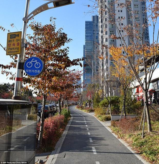 Hàn Quốc chi 40 tỷ USD biến thị trấn hoang thành thành phố thông minh - Ảnh 7.