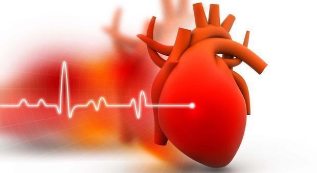 Các nhà nghiên cứu phát hiện bài tập đơn giản giúp giảm hơn 60% nguy cơ mắc bệnh tim ở nữ giới - Ảnh 4.