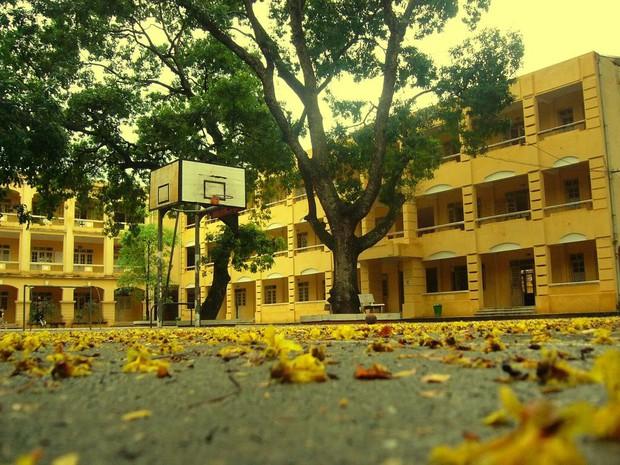 Chùm ảnh: Những góc kỷ niệm đầy quen thuộc của mái trường xưa - Ảnh 5.