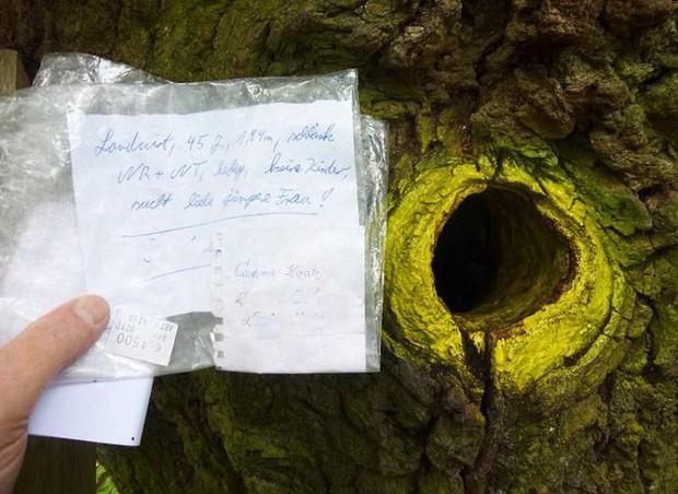 Ngày nào cũng có người mang thư gửi đến cây sồi, đằng sau đó là câu chuyện về những mối nhân duyên cảm động - Ảnh 3.
